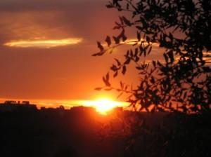 tramonto Caffarella1